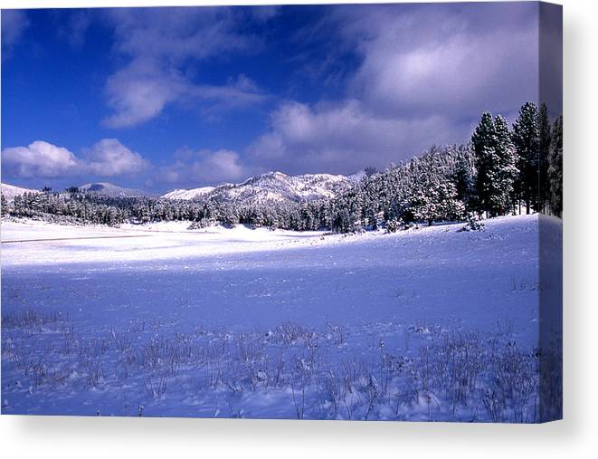 State Park Canvas Print featuring the photograph Custer State Park by Barry Shaffer