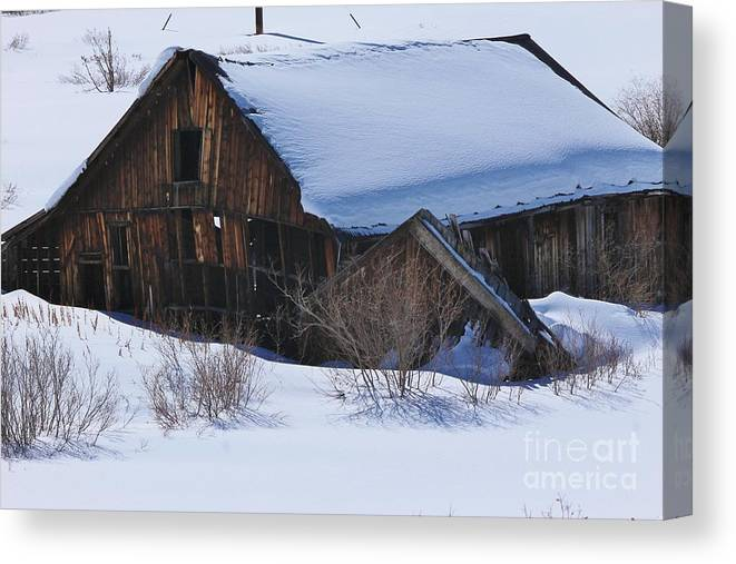 Nature Canvas Print featuring the photograph Days Gone By 4 by Tonya Hance