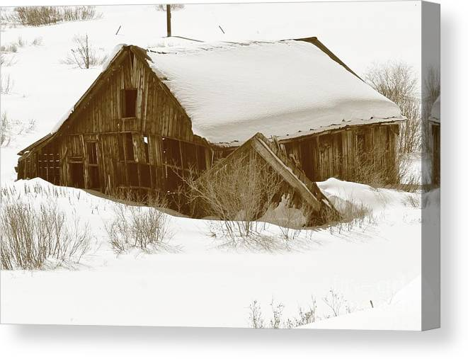 Nature Canvas Print featuring the photograph Days Gone By 5 by Tonya Hance