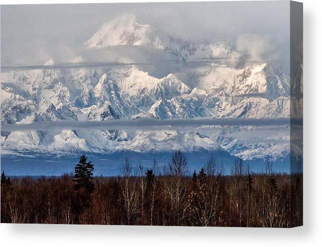 Denali Canvas Print featuring the photograph Denlai 2016 by Michael Rogers