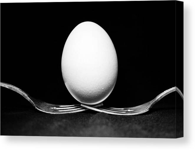 Egg Canvas Print featuring the photograph Egg Still Life by Marisa Geraghty Photography