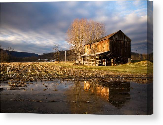 Farm Canvas Print featuring the photograph eve by Kevin Brett