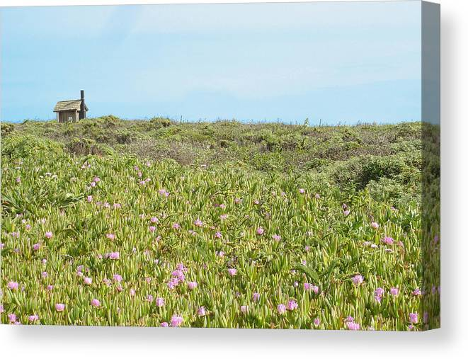House Canvas Print featuring the photograph Field Of Flowers by Michael Simeone