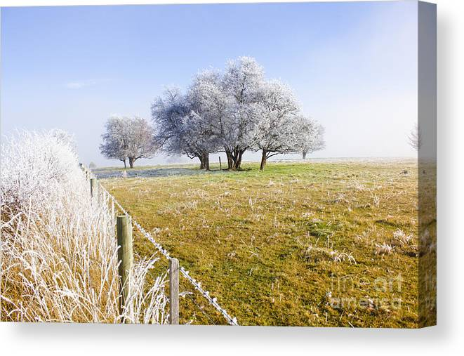 Artistic Canvas Print featuring the photograph Fine Art Winter Scene by Jorgo Photography - Wall Art Gallery