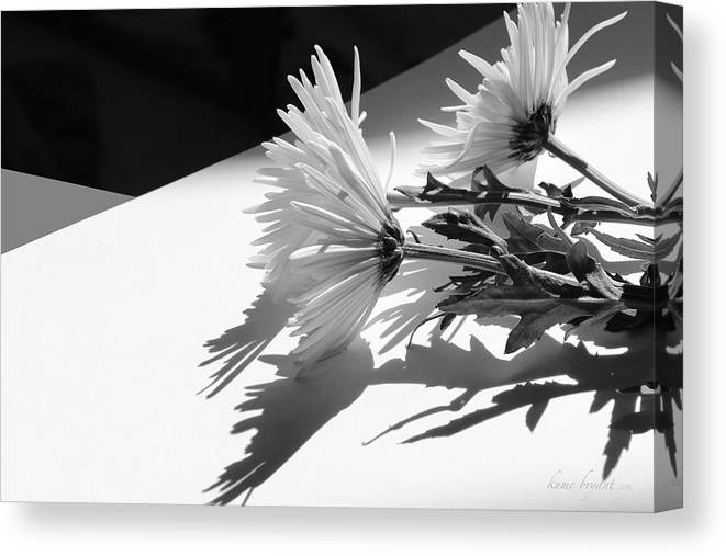 Floral Canvas Print featuring the photograph Floral No2 by Kume Bryant
