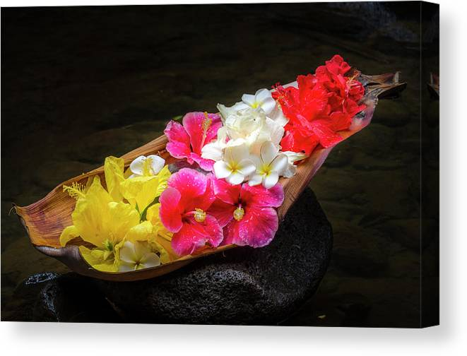 Flowers Canvas Print featuring the photograph Flower Boat by Daniel Murphy