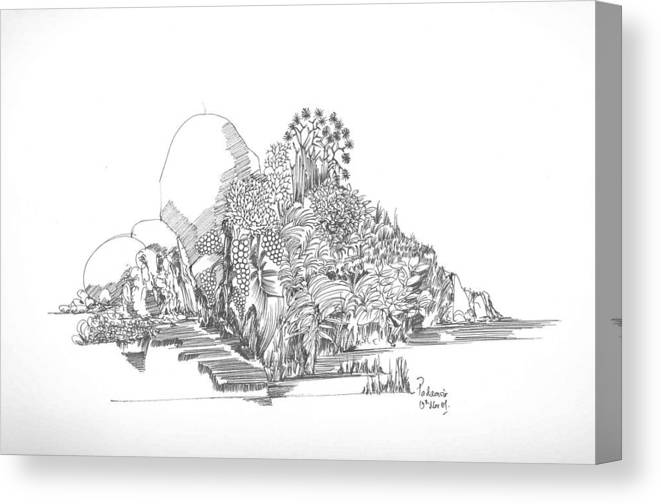Landscape Canvas Print featuring the drawing Foliage Trees And Rocks by Padamvir Singh
