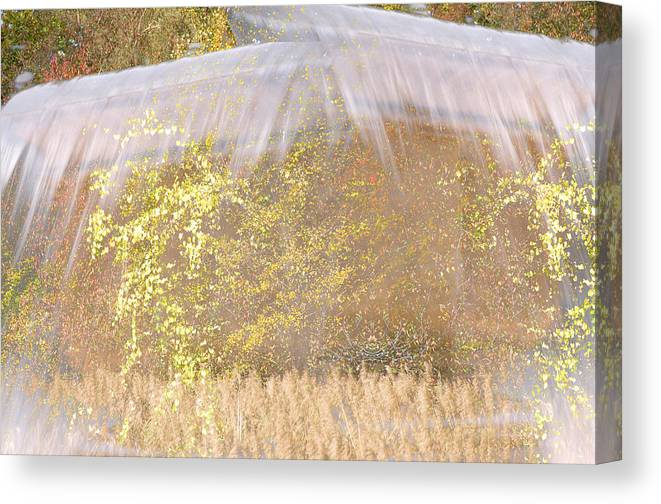 Abstract Landscape Canvas Print featuring the photograph Fontaine Aux Fleurs by Mary Mansey
