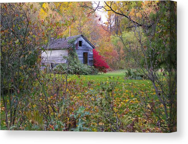 Landscape Canvas Print featuring the photograph From The Side Of The Road by Renee Summers