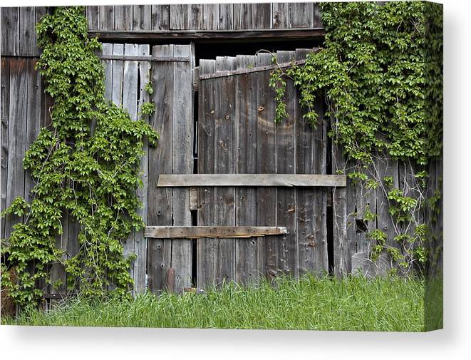 Barn Doors Canvas Print featuring the photograph Glengarry Barn Doors by Jacqueline Milner