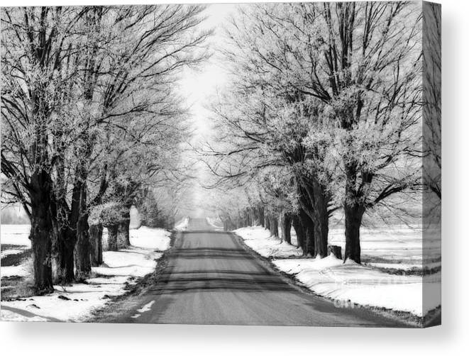 Snow Canvas Print featuring the photograph Going Home For The Holidays by Cathy Beharriell