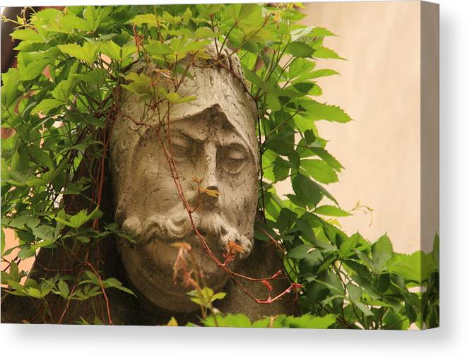 Venice Canvas Print featuring the photograph Head With Vines by Michael Henderson