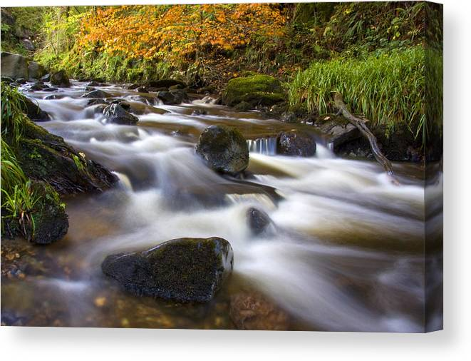 Scotland Canvas Print featuring the photograph Highland River In Autumn by John McKinlay
