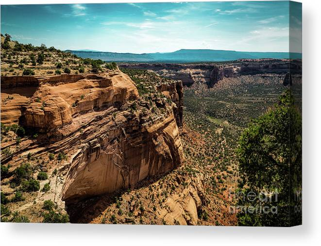 Jon Burch Canvas Print featuring the photograph In Case It Rains by Jon Burch Photography