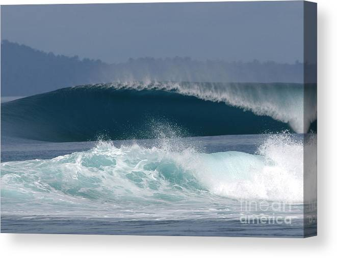 Sea Canvas Print featuring the painting Indo by Addison Fitzgerald