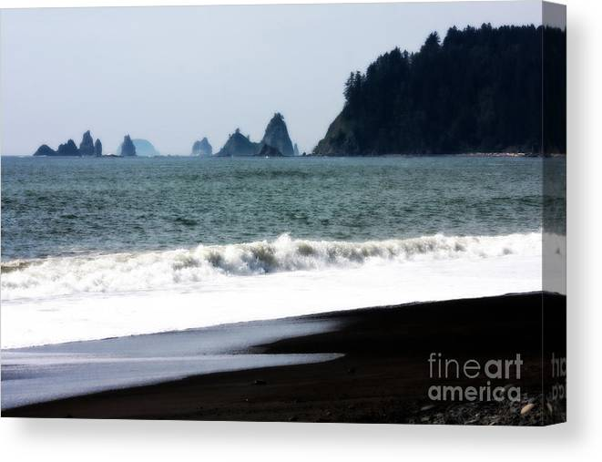 La Push Beach Canvas Print featuring the photograph Jacob's Dream by Carol Groenen