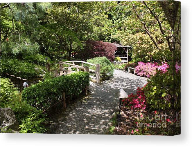 Japanese Garden Canvas Print featuring the photograph Japanese Garden Path With Azaleas by Carol Groenen
