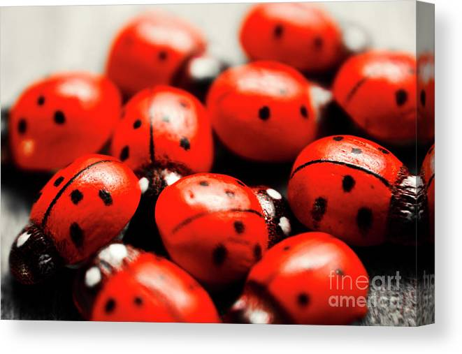 Group Canvas Print featuring the photograph Ladybug Luck by Jorgo Photography - Wall Art Gallery