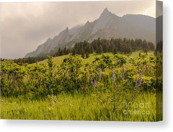 Air Canvas Print featuring the photograph Lazy Flatrisons Spring by Greg Summers