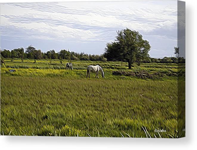 Horse Canvas Print featuring the photograph Les Chevaux Dans Le Pre by Kris Woo
