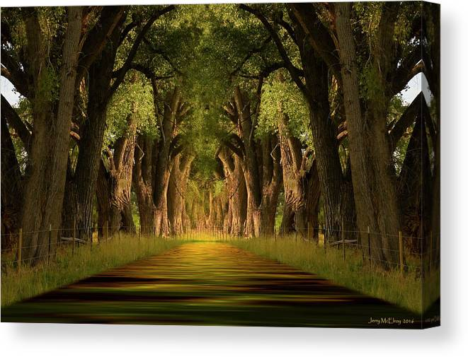 Cottonwood Canvas Print featuring the photograph Life's Journey by Jerry McElroy