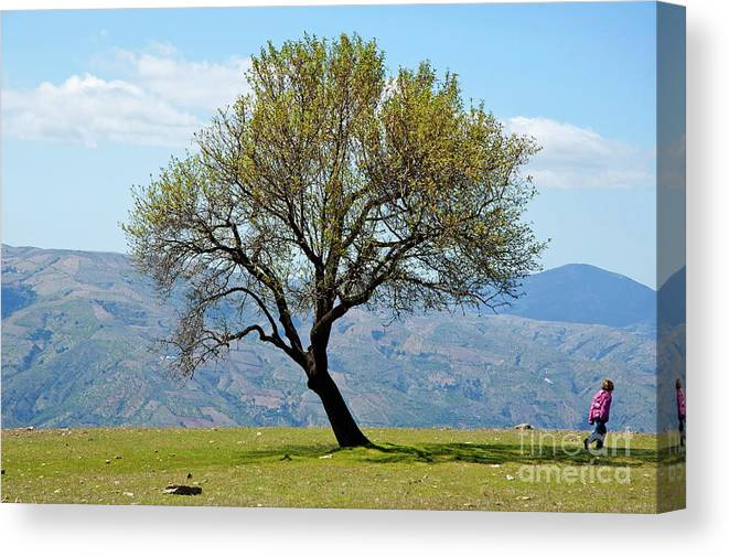 Alpujarra Canvas Print featuring the photograph Little Girl Walking Past A Tree In Springtime by Sami Sarkis