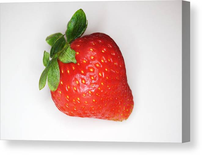 Strawberry Canvas Print featuring the photograph Lone Strawberry by Chris Day
