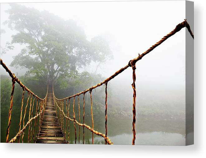 Jungle Journey Bridge Canvas Print featuring the photograph Long Rope Bridge by Skip Nall