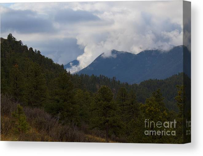 Pike National Forest Canvas Print featuring the photograph Low Clouds In Ute Pass Colorado by Steve Krull