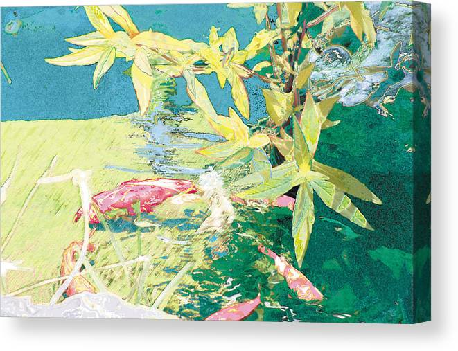 Koi Canvas Print featuring the photograph Marry-go-round Kio In The Spring-may Day by Judy Loper