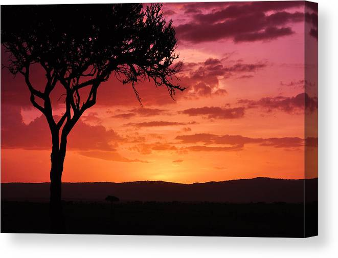 Canvas Print featuring the photograph Masai Mara Sunrise by Tahomawind Photography