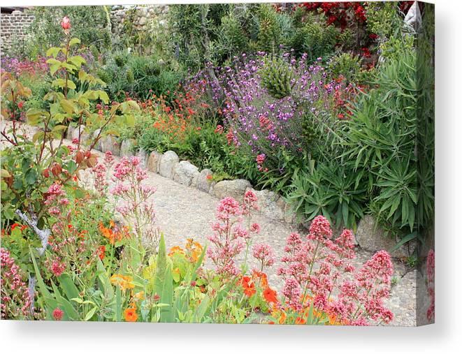 Garden Canvas Print featuring the photograph Mission Garden by Carol Groenen