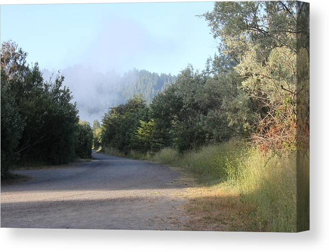 Trail Canvas Print featuring the photograph Morning Light By The Russian River by Remegio Onia
