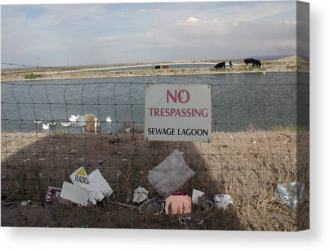 No Trespassing Canvas Print featuring the photograph No Trespassing by D'Arcy Evans
