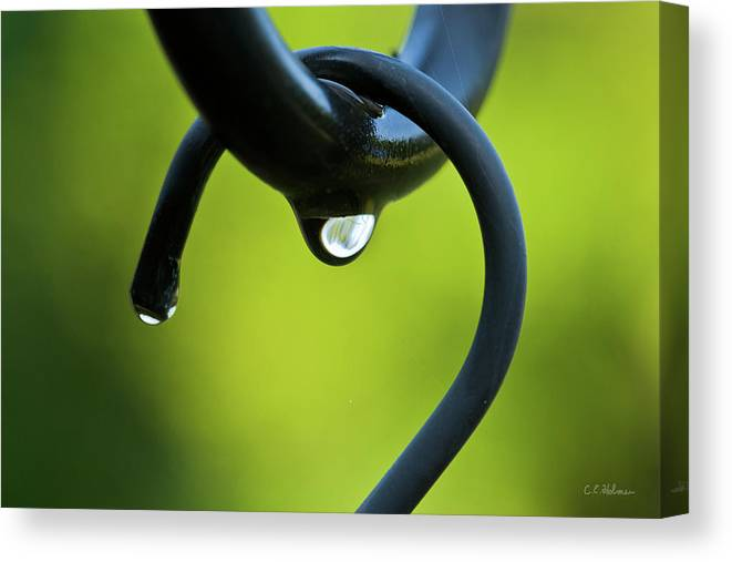 Hook Canvas Print featuring the photograph On The Hook by Christopher Holmes