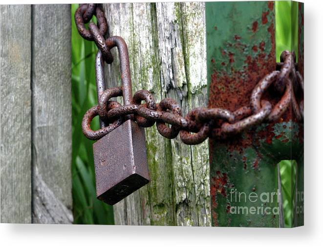 Abstract Canvas Print featuring the photograph Padlocked Gate by Alan Look