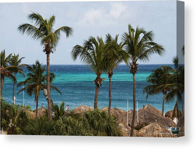Palm Canvas Print featuring the photograph Palm On The Beach by Roberto Baez Duarte