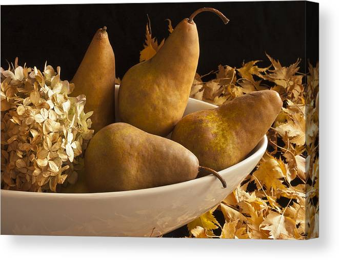 Pears Canvas Print featuring the photograph Pears And Hydrangea Still Life by Sandra Foster