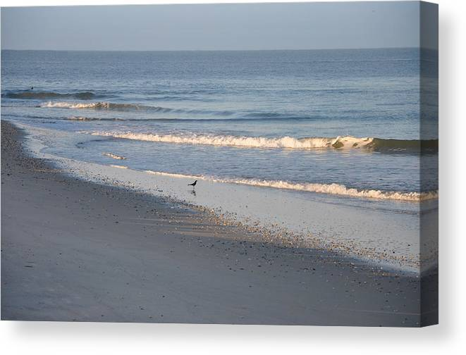 Beach Canvas Print featuring the photograph Perfect by Bill Cannon