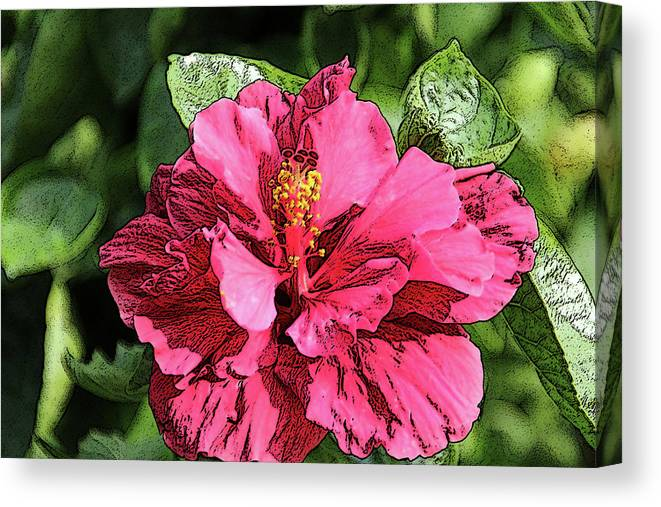 Flower Canvas Print featuring the photograph Pink Flower by Adina Campbell