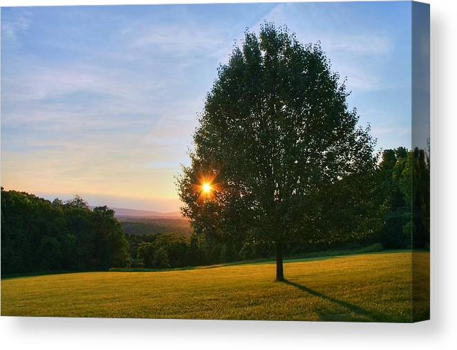 Landscape Canvas Print featuring the photograph Poetry Of Nature by Mitch Cat