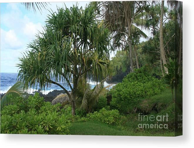 Aloha Canvas Print featuring the photograph Poponi Maui Hawaii by Sharon Mau