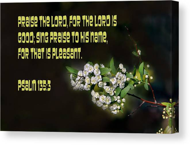 Scripture Canvas Print featuring the photograph Psalms One Hundred Thirty Five Vs Three by Linda Phelps