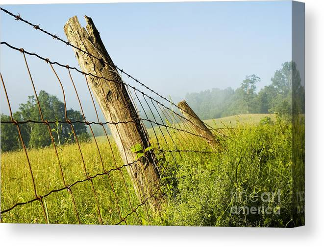 Misty Morning Canvas Print featuring the photograph Rising Mist With Falling Fence by Thomas R Fletcher