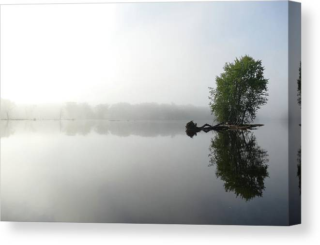 St Croix River Fog Canvas Print featuring the photograph Riverbank Fog by Karen Schulz