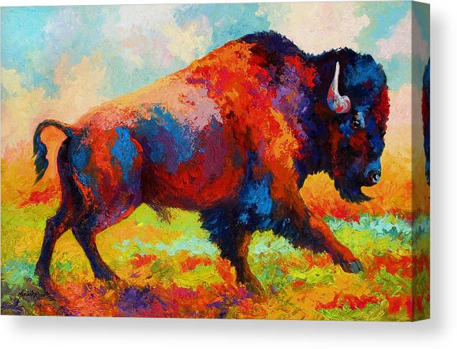 Bison Canvas Print featuring the painting Running Free by Marion Rose