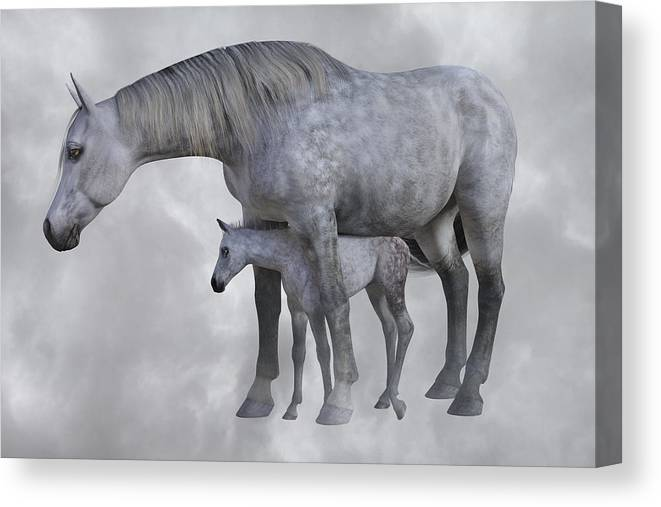 Horse Canvas Print featuring the digital art Safe Harbor by Betsy Knapp