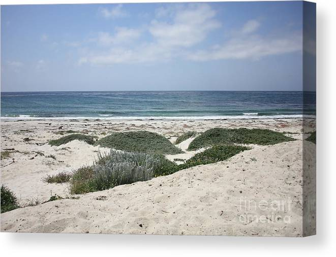 Sandy Beach Canvas Print featuring the photograph Sand And Sea by Carol Groenen