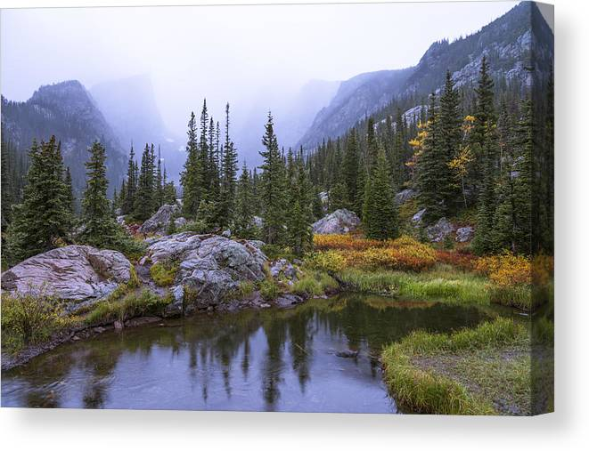 Saturated Forest Canvas Print featuring the photograph Saturated Forest by Chad Dutson