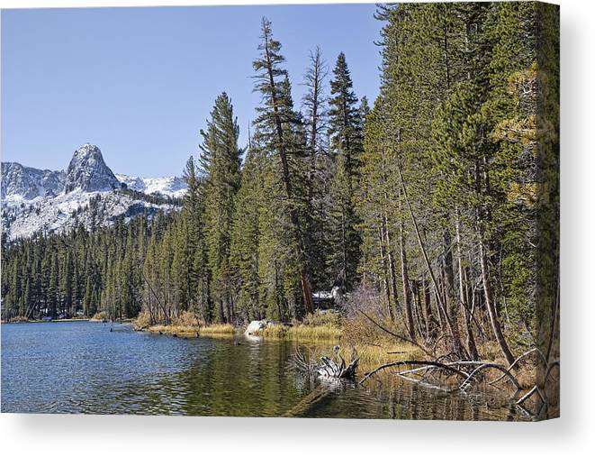 Water Canvas Print featuring the photograph Scenic Beauty by Kelley King